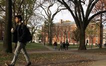 Ở Harvard giờ đây sinh viên da trắng lép vế