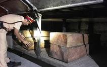 Xe khách chở gỗ lậu bị bắt, hành khách phải chuyển xe