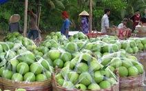 Thêm thị trường, ngành trồng trọt sẽ tăng trưởng trên 2%