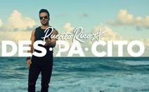 Ca sĩ của Despacito trở thành đại sứ du lịch của Puerto Rico