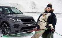Discovery Sport 2018 đua tốc độ với chó husky trên đường tuyết
