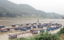 Nước sông dâng cao, nhiều lồng cá bịcuốn trôi