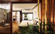 Dùng cây xanh để giảm xung hại cho ngôi nhà