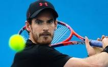 Murray có thể vắng mặt ở Giải Úc mở rộng 2018
