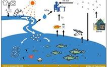 Chất ô nhiễm của môi trường hiện đại