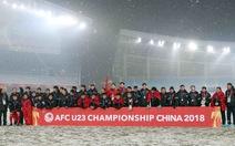 VFF đã nhận được 15 tỉ đồng của các doanh nghiệp thưởng đội tuyển U-23 VN