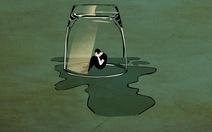 Chống tác hại của đồ uống có cồn: Những liên minh tài chính và chính trị ngăn cản ra sao?