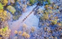 Rừng thu Rú Chá qua góc ảnh flycam