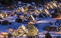 Ngắm tuyết trắng, anh đào ở Nhật Bản tháng 2