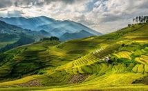 Việt Nam vào top 10 quốc gia du lịch tuyệt vời nhất thế giới 2020