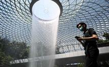 1.000 khách Việt đã đến Singapore bằng thẻ thông hành hàng không
