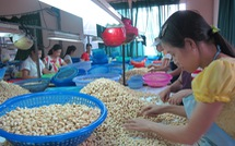 Việt Nam nhập siêu trên 173 triệu USD từ... Nigeria
