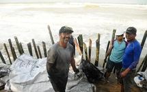 Hàng chục khách Tây vác cát, đắp đê cùng người Hội An giữ bờ biển