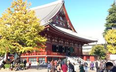 Đi Nhật Bản ngắm 'mùa thu lá bay' chỉ với 21 triệu