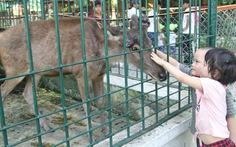 Vườn thú 30 năm tuổi, vẫn phải giải thể vì ngày càng teo tóp
