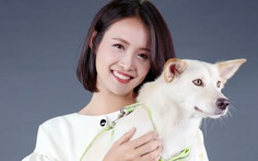 Phim nóng đề tài… trộm chó và sự trở lại của Lý Hùng