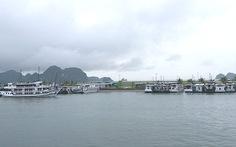 Chìm tàu du lịch trong bến cảng Tuần Châu