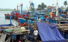 Dừng nhận chìm bùn, thải xuống biển Quảng Ngãi