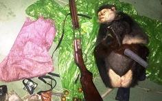 Truy bắt 2 đối tượng bắn chết voọc chà vá chân nâu
