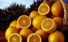 Con người tìm ra rặng san hô Great Barrier Reef nhờ...trái cam