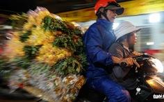 Chợ hoa lớn nhất Sài Gòn hối hả trước ngày 20-10