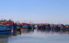 VASEP đề nghị Chính phủ, Quốc hội hỗ trợ giải cứu hải sản