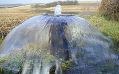 Mối nguy từ nguồn nước ô nhiễm