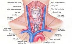 Những bệnh thường gặp của tuyến giáp