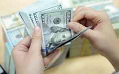 Ngân hàng Nhà nước yêu cầu thực hiện tốt huy động vốn bằng ngoại tệ