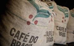 Sản lượng xuất khẩu cà phê của Brazil giảm mạnh trong năm nay