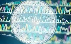 Tìm ra 'vũ khí' chống vi khuẩn kháng thuốc