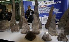 Mang 7,4kg sừng tê, 3 người Việt bị bắt ở sân bay Thái
