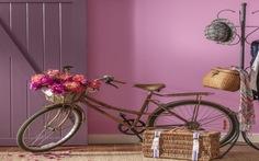 5 sắc màu đầy sức sống nên sử dụng trong trang trí nội thất