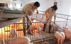 Gỡ bỏ 12 thủ tục sản xuất, kinh doanh chăn nuôi, thuỷ sản
