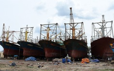 Có thể kiện ra tòa đòi bồi thường vụ tàu cá vỏ thép nằm bờ