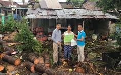 Hội Doanh nhân trẻ TP.HCM cứu trợ đồng bào thiệt hại do bão