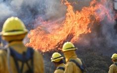 Cháy rừng ở California, quận Cam báo động đỏ