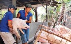 Doanh nghiệp FDI sẽ thâu tóm thị trường thịt heo?