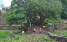 Wat Phou một thời vang bóng