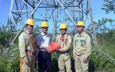 Xử lý các tồn tại trên đường dây 500 kV Pleiku - Đắk Nông