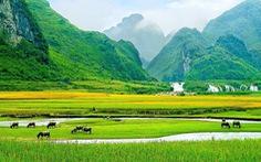 Cảnh Việt Nam xanh thẳm, đẹp như thơ