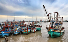 Ngư dân Cà Mau hối hả vào bờ trú bão