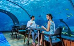 Ăn ngon tại nhà hàng dưới nước lớn nhất thế giới