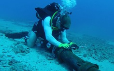 Sửa xong cáp quang biển, internet Việt Nam trở lại bình thường