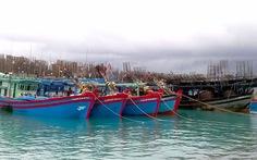 Huyện Trường Sa đón 128 tàu và 1.500 ngư dân tránh bão số 11