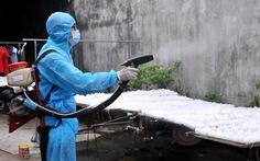 Đồng Nai ghi nhận 11 người bị bệnh do virút Zika