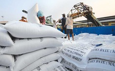 Indonesia có kế hoạch nhập khẩu gạo Việt Nam