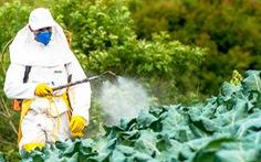Bộ trưởng Pháp hứng đá vì lộ liễu bảo vệ thuốc trừ sâu