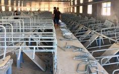 Tháo dỡ trại heo xây trái phép ở đầu nguồn sông Đồng Nai