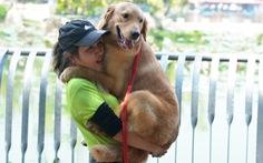 Đến lễ hội cún cưng ngắm những chú cún cực dễ thương